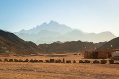 Cenário do deserto africano Imagem de Stock Royalty Free