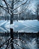 Cenário do inverno Fotografia de Stock