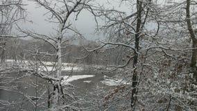 Cenário do inverno Fotos de Stock
