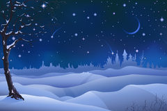 Cenário do inverno da noite Foto de Stock