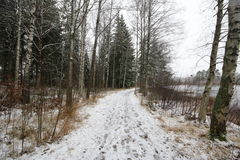 Cenário do inverno na Suécia de Nybro Foto de Stock Royalty Free