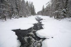Cenário do inverno no parque nacional de Oulanka Ruka, Finlandia fotografia de stock