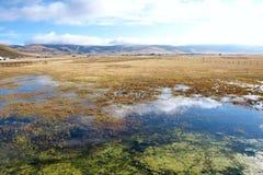 Cenário do lago Fotos de Stock Royalty Free