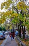 Cenário do outono de Vyborg, Rússia Fotografia de Stock Royalty Free