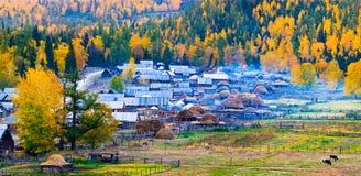 Cenário do outono, vila de Baihaba, Xinjiang China imagem de stock royalty free