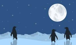 Cenário do pinguim com silhuetas da lua Imagem de Stock Royalty Free
