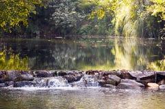 Cenário do rio Imagem de Stock Royalty Free