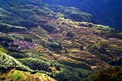 Cenário do terraço de Lishui Imagem de Stock