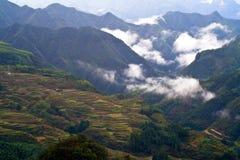 Cenário do terraço de Lishui Fotos de Stock Royalty Free