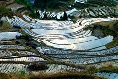 Cenário do terraço de Lishui Fotografia de Stock Royalty Free