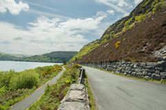 Cenário do verão ao longo da borda da estrada no vale da disposição de Powys, Gales imagem de stock