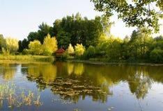 Cenário do verão com o lago no outono foto de stock royalty free