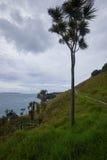 Cenário e paisagens através da terra e da água na ilha N de Waiheke Imagens de Stock