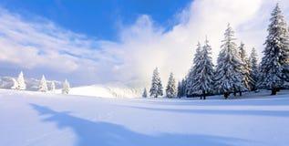Cenário fantástico do frio do inverno A sombra e as luzes jogam nos montes de neve brancos fotografia de stock royalty free