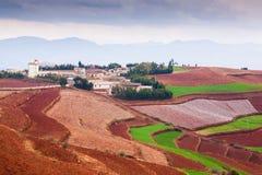 Cenário fantástico rural de Yunnan sul, China Campos de trigo bonitos na terra vermelha de Dongchuan Duas motocicletas na estrada fotografia de stock