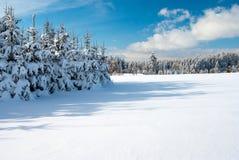 Cenário invernal da paisagem Foto de Stock Royalty Free