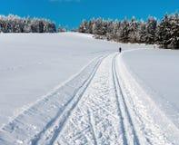 Cenário invernal da paisagem Imagem de Stock