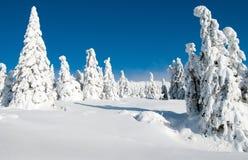 Cenário invernal da paisagem de Krkonose - montanhas gigantes Foto de Stock