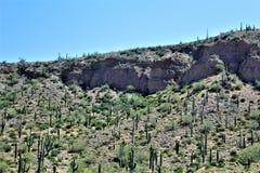 Cenário Jerome da paisagem, Maricopa County, o Arizona, Estados Unidos imagens de stock royalty free