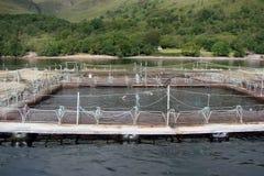 Cenário natural do fiorde de Escócia ocidental perto de Fort William Foto de Stock