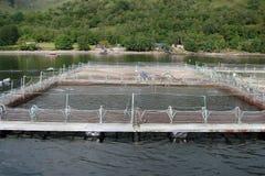 Cenário natural do fiorde de Escócia ocidental perto de Fort William Fotos de Stock