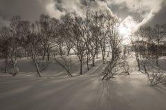Cenário nebuloso nevado da montanha perto de Goshiki Onsen fotos de stock royalty free