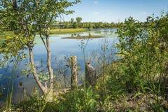 Cenário no rio do DES Milles Iles fotografia de stock royalty free