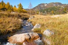 Cenário outonal da montanha Fotos de Stock Royalty Free