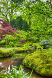 Cenário pitoresco do jardim japonês Fotografia de Stock