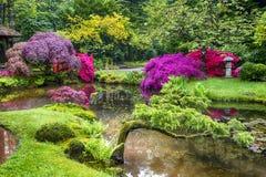 Cenário pitoresco surpreendente do jardim japonês em Haia & em x28; Den Haag & x29; nos Países Baixos em linha reta após a chuva Fotografia de Stock