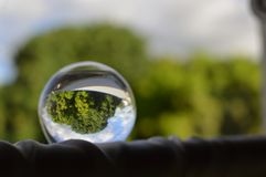Cenário refletindo da bola de cristal Foto de Stock