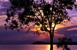 Cenário roxo do por do sol na ilha Eretria Euboea Grécia dos sonhos imagem de stock