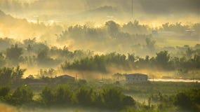 Cenário rural Imagem de Stock