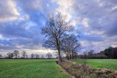 Cenário rural, campo com árvores perto de uma vala com as nuvens dramáticas no crepúsculo, Weelde, Bélgica fotografia de stock royalty free