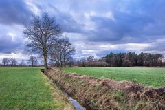 Cenário rural, campo com árvores perto de uma vala com as nuvens dramáticas no crepúsculo, Weelde, Flanders, Bélgica imagem de stock royalty free