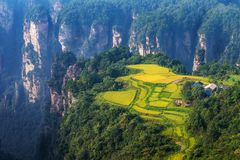 Cenário rural em Zhangjiajie, China Foto de Stock Royalty Free