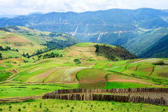 Cenário rural, Shangri-La Foto de Stock Royalty Free