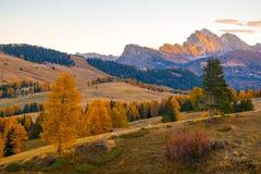 Cenário surpreendente do outono de Alpe di Siusi no nascer do sol, cumes da dolomite, Itália imagens de stock royalty free