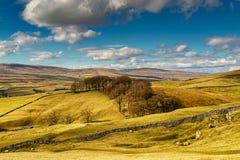 Cenário típico dos vales de Yorkshire com Rolling Hills e terra Imagem de Stock