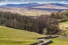 Cenário típico dos vales de Yorkshire com Rolling Hills e um país Imagens de Stock Royalty Free