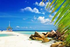 Cenário tropical foto de stock