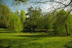 Cenário verde Imagens de Stock Royalty Free