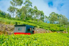 Cenários bonitos de Haputale, Sri Lanka Fotografia de Stock