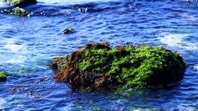 ? cen?rio azul bonito do mar de Udo da ilha de Jeju fotografia de stock