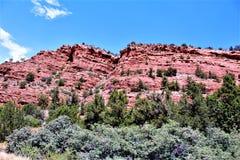 Cen?rio Maricopa County da paisagem, Sedona, o Arizona, Estados Unidos fotos de stock