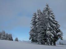 Cena/Alemanha do inverno Imagem de Stock Royalty Free