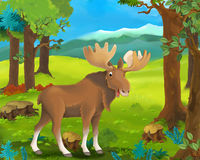 Cena animal dos desenhos animados - alce Fotos de Stock Royalty Free