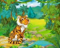 Cena animal dos desenhos animados - caricatura - tigre Imagem de Stock Royalty Free