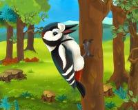 Cena animal dos desenhos animados - pica-pau Fotografia de Stock