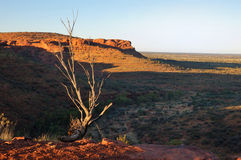 Cena australiana típica do interior (Garganta do rei) Fotografia de Stock Royalty Free